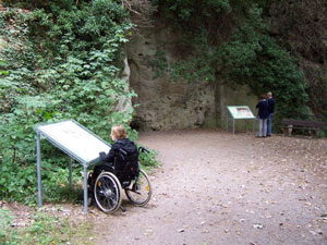 Woman in wheelchair reading an information board (Picture: Eifel barrierefrei)