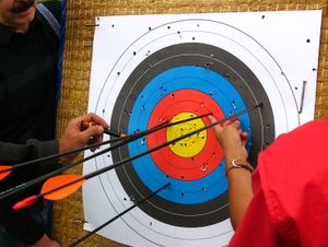Archers examining their arrows on the target  (photo: Rainer Sturm  / pixelio.de)